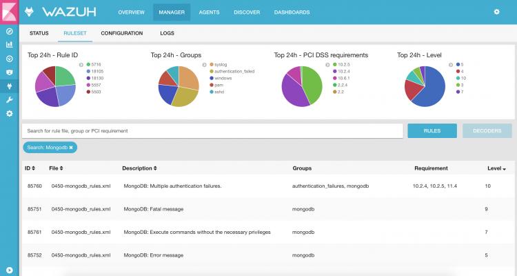 Dashboard showing the ruleset tab. Screenshot.