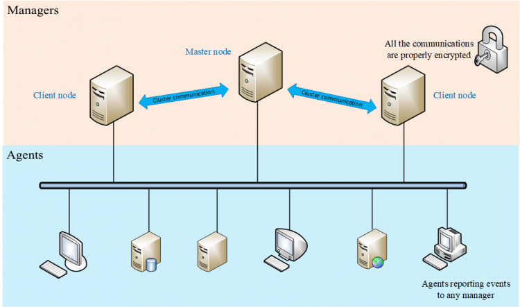 Cluster architecture for Wazuh managers. Diagram.