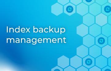 Index backup management