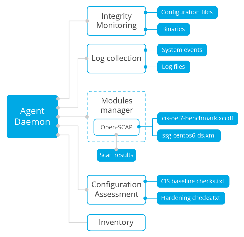 Wazuh agent processes. Diagram.